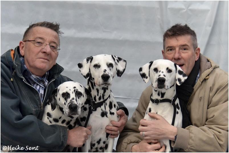 Peter, Thomas und die Hunde