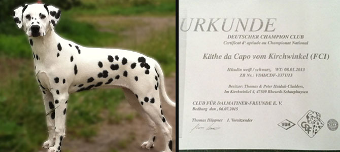 Champion Kaethe da Capo vom Kirchwinkel